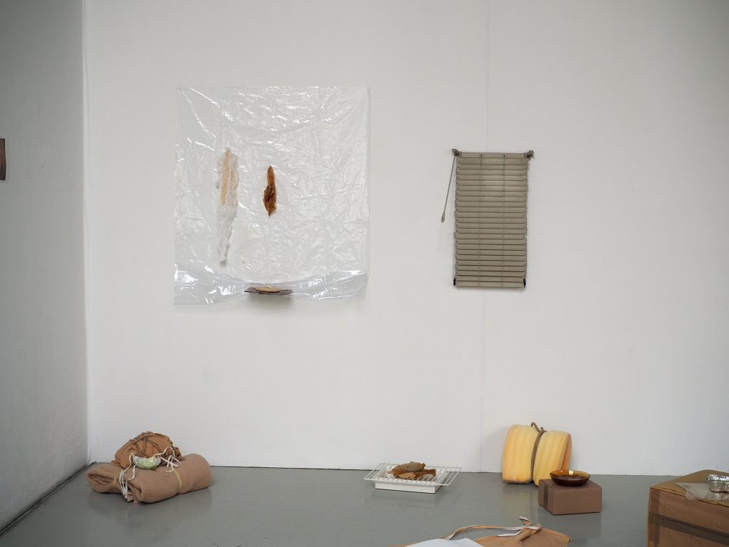 Constanze Kriester, 2018,